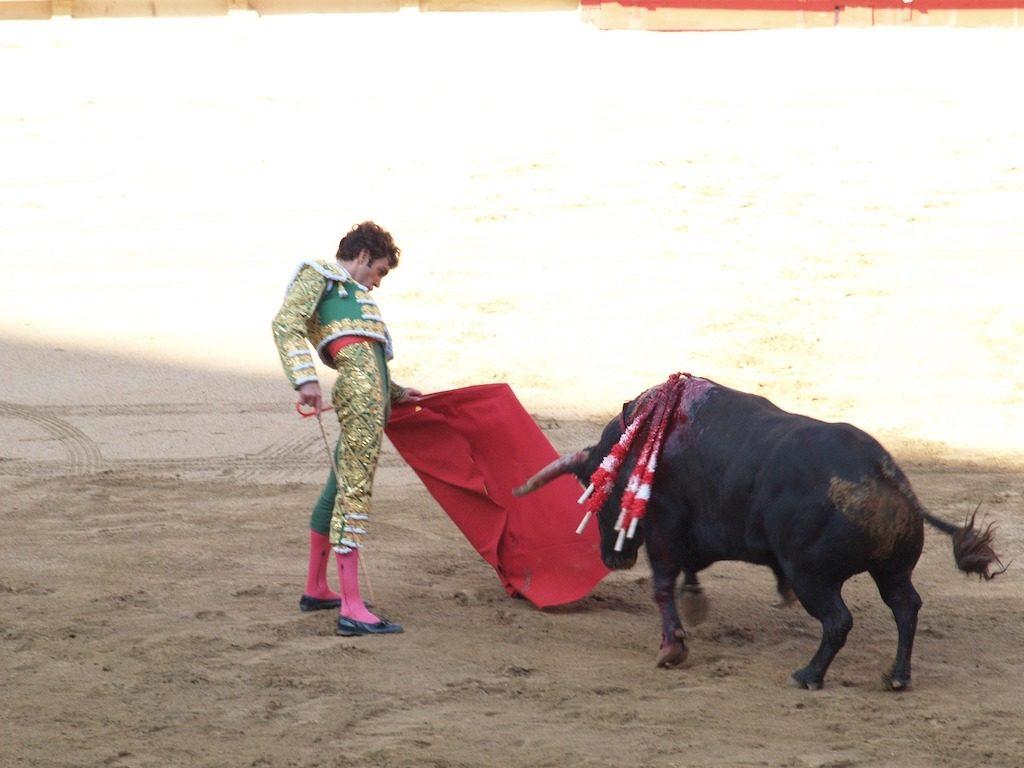 闘牛士のマントの赤を牛は見えない